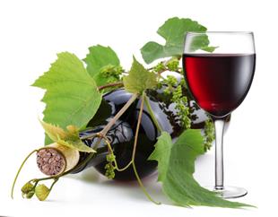 Declaração de Colheita e Produção (Manifesto do Vinho)